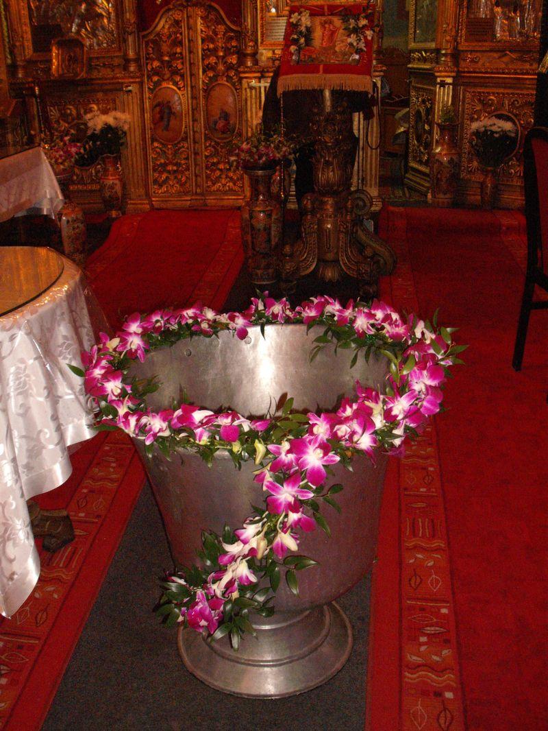 CR 08-140,00 RON-Aranjament cristelnita cu orhidee