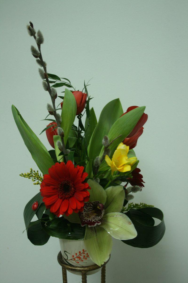 AN 26-60,00 Ron-Aranjament natral cu gerbera, lalele si orhidee