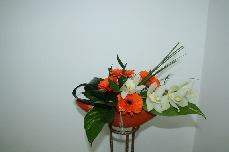 AN 27-45,00 Ron-Aranjament natural cu orhidee si mini gerbera