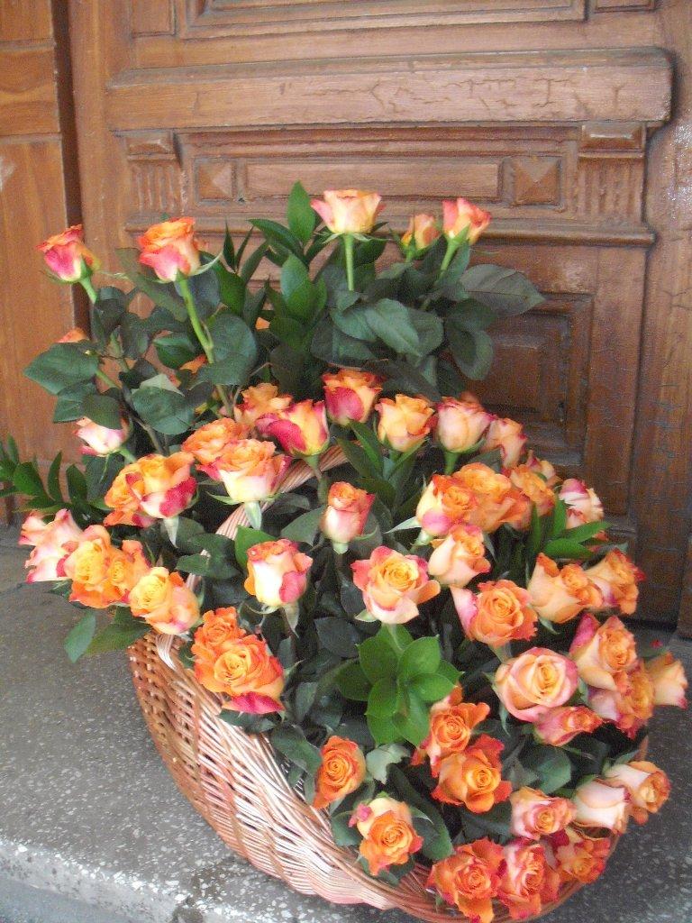 CF 03-630,00 Ron-Cos cu 69 de trandafiri