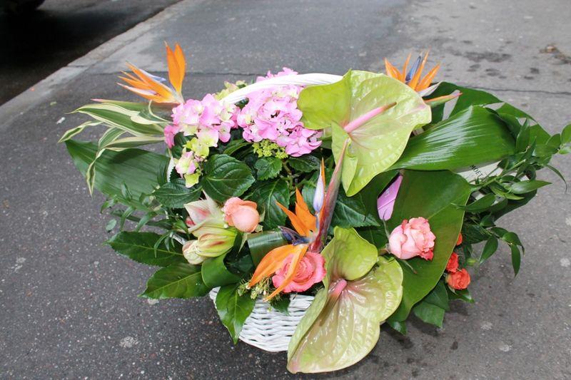 CF 04-500,00 Ron-Cos cu anthurium, amarillys, hortensie, strelizia si trandafiri