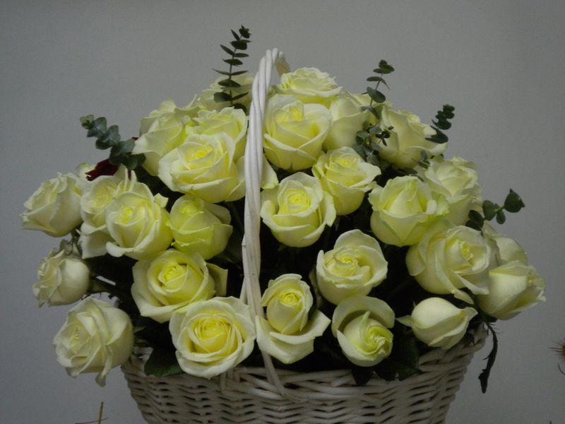 CF 06-550,00 Ron-Cos cu 55 de trandafiri