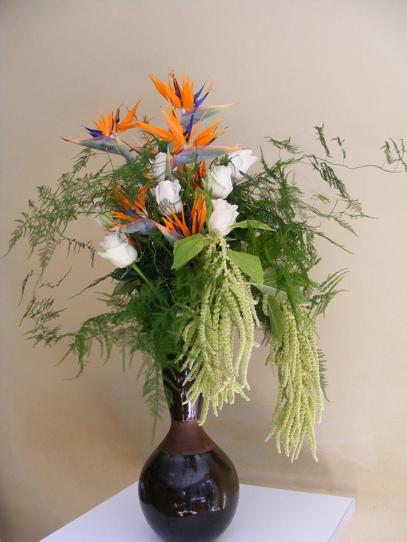 AN 37-250,00 Ron-Aranjament natural cu trandafiri, strelizia si amaranthus